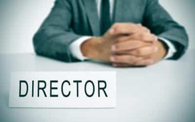 Difference between a director and a shareholder in limited company (Ltd)